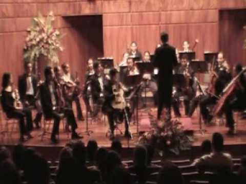I. Allegretto Concerto in D - Mario Castelnuovo-Tedesco