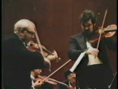 Mozart: Sinfonia Concerto K. 364 part 2