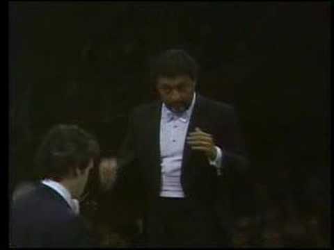 Pinchas Zukerman: Four Seasons Summer I. Allegro con molto