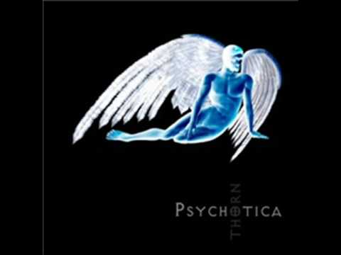 Psychotica Palendrome