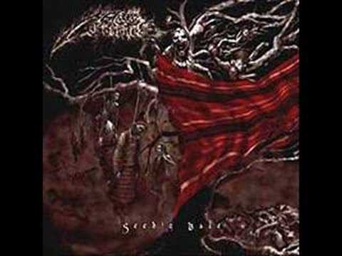 Chthonic-Quasi Putrefaction