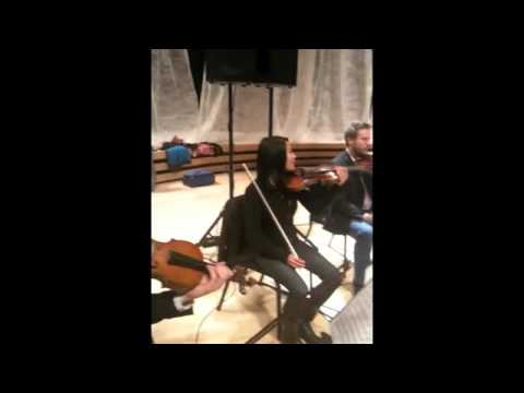 Rehearsal: Opus 14 by Corky Siegel`s Chamber Blues