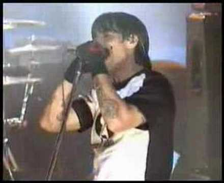Red Hot Chili Peppers Live at Hollywood Can`t stop!