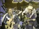 Jerry Reed and Roy Clark-Are You from Dixie