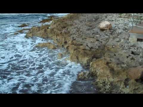 Caribbean Holidaze 2009
