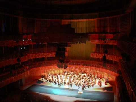 "SALUTTE TO VIENNA TOUR 2009 @ "" DANUBIO AZUL"""