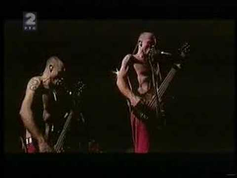 Red Hot Chili Peppers at Green Fest - Flea`s Song