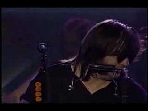 Steve Earle - I Feel Alright (MTV Live)