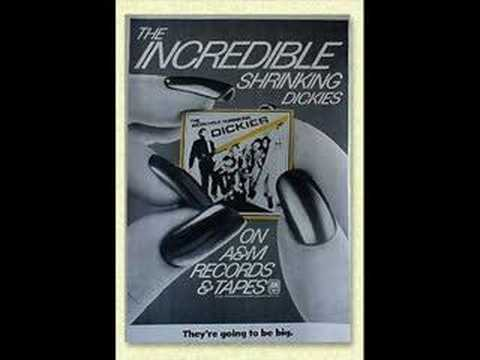 The Dickies - I`m Stuck in a Pagoda with Tricia Toyota