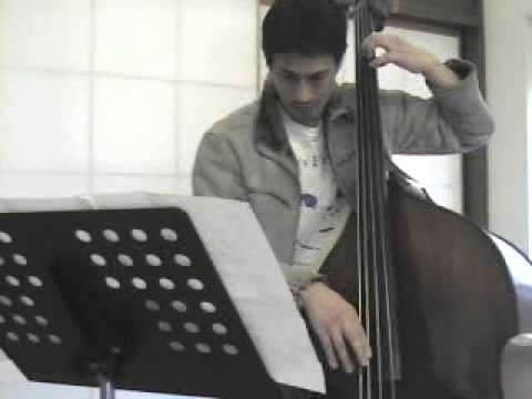 Ray Brown`s Walking Bass line -The Days of Wine and Rose(practice !)