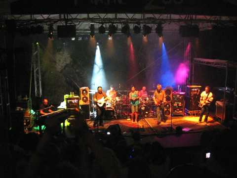 Dark Star Orchestra - Forever Young - 2010.06.24 Minnesota Zoo