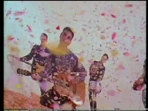 "The Wedding Present ""Why Are You Being So Reasonable Now?"" promo video"