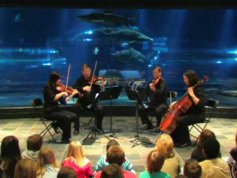 Symphony By The Sea At The Oklahoma Aquarium