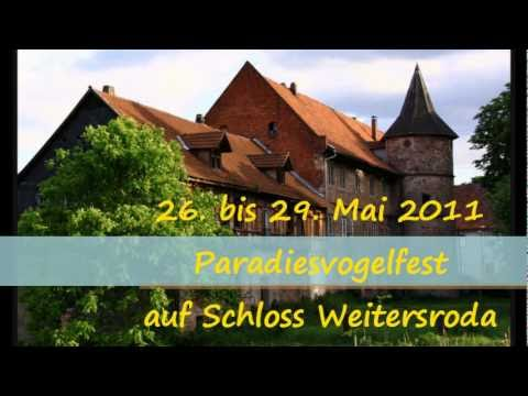 V�gel im Garten (Prinz Chaos II.) / Paradiesvogelfest