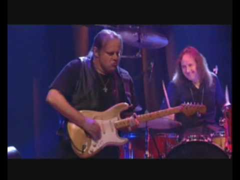 Walter Trout - Dust my broom