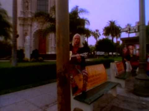 Warrant - The Bitter Pill