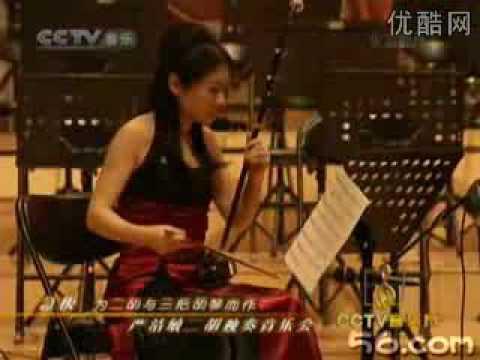 ??Erhu - ???Yan Jiemin plays Stefano Bellon`s Presto ??