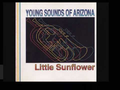 "Young Sounds Of Arizona- ""Swung Out To Dry"""