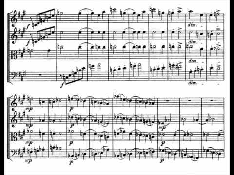 Alexander Zemlinsky - String Quartet no. 1 (4/4)