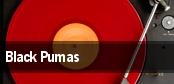 Black Pumas tickets
