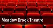 Meadow Brook Theatre tickets