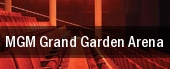 MGM Grand Garden Arena tickets